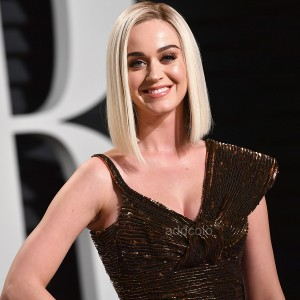 【Wigs】Katy Perry Human Hair Wigs Blonde Color Silky Straight Wig