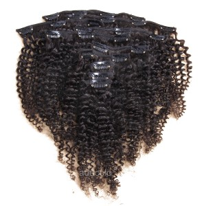 【Addcolo 8A】Clip-In Hair Extensions Brazilian Hair Kinky Curly
